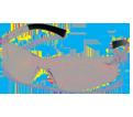 Safety Glasses - Polycarbonate - Poly / S25 Series *MINI ZTEK