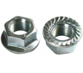 Flange Nuts - Serrated - Steel / ZINC