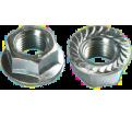 Flange Nuts - Serrated - Steel / ZINC